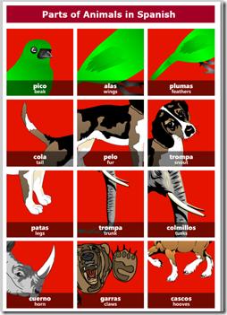 animalsParts